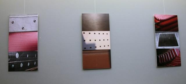 Vilijos Kailiūtės fotografijų parodos fragmentas.