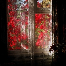 Feliksas Kerpauskas. Photograph ''The Window''. The photograph is printed on the canvas, wrapped on the underframe and prepared for hanging. 300 €.