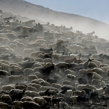 Raimondas Puišys. The serie of photographs ''Highlands Lowlands''