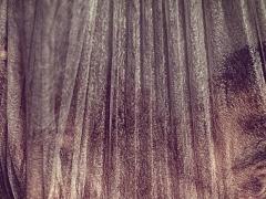 "Ingrida Mockutė- Pocienė fotografija iš serijos ""MUTABOR""  fotografijos formatas 100 X 60 cm. Kaina 350 Eur"