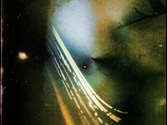 """Žilvinas Kropas. Fotografija iš serijos """"Solargraphy"""" Spauda. Fotografijos formatas 60x60., Ekspozicijos laikas 2mėnesiai. 2016m.  Kaina 400€"""