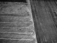 """Indrė Bagdonė fotografija iš serijos """"Raštai"""""""